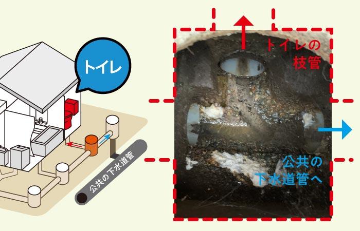 トイレの枝管排水管高圧洗浄